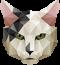 avatar_kokkieblanda