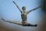 avatar_Fookus